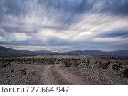 Купить «Landscape in the Anza-Borrego Desert», фото № 27664947, снято 21 мая 2018 г. (c) PantherMedia / Фотобанк Лори