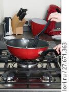 Купить «Cooking Pan», фото № 27671363, снято 24 мая 2019 г. (c) PantherMedia / Фотобанк Лори