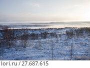 Купить «Тундра зимой на закате. Кольский полуостров.», фото № 27687615, снято 4 ноября 2016 г. (c) Victoria Demidova / Фотобанк Лори