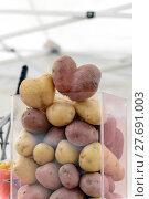 Купить «Overflowing Basket of Potatoes.», фото № 27691003, снято 18 октября 2018 г. (c) PantherMedia / Фотобанк Лори