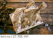 Купить «Two fresh flatfish on ice with kelp seaweed», фото № 27705191, снято 19 февраля 2018 г. (c) PantherMedia / Фотобанк Лори