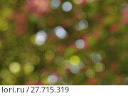 Купить «Abstract background boke», фото № 27715319, снято 23 июля 2018 г. (c) PantherMedia / Фотобанк Лори