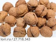 Купить «walnuts heap isolated on  white background », фото № 27718343, снято 11 июля 2020 г. (c) PantherMedia / Фотобанк Лори