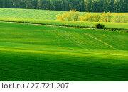 Купить «Beautiful green sping rural landscape», фото № 27721207, снято 27 июня 2019 г. (c) PantherMedia / Фотобанк Лори