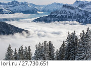 Купить «Splendid winter alpine scenery with high mountains and trees covered with snow, clouds hanging low in the valley», фото № 27730651, снято 22 апреля 2019 г. (c) PantherMedia / Фотобанк Лори