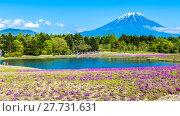 Купить «Fuji with the field of pink moss at Shibazakura festival, Yamanashi, Japan», фото № 27731631, снято 17 июля 2019 г. (c) PantherMedia / Фотобанк Лори