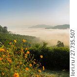 Купить «Sunrise with sea of fog above Mekong river in Nong Khai Province, Thailand», фото № 27735507, снято 23 августа 2019 г. (c) PantherMedia / Фотобанк Лори