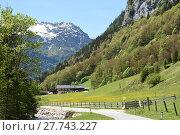 Купить «weißbach near lofer,pinzgau,salzburg,steinernes meer,alm,pasture,mountains,loferer steinberge», фото № 27743227, снято 20 мая 2019 г. (c) PantherMedia / Фотобанк Лори