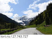Купить «felber,hintersee,mittersill,hohe tauern,valley,felbertauern,national park,tauernkogel», фото № 27743727, снято 20 мая 2019 г. (c) PantherMedia / Фотобанк Лори