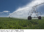 Купить «Crop Irrigation center pivot sprinkler system», фото № 27748215, снято 17 сентября 2018 г. (c) PantherMedia / Фотобанк Лори