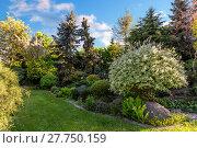 Купить «Beautiful spring garden design», фото № 27750159, снято 23 февраля 2019 г. (c) PantherMedia / Фотобанк Лори