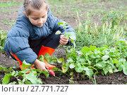 girl holding a radish. Стоковое фото, фотограф Myroslav Kuchynskyi / Фотобанк Лори