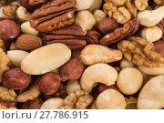 Купить «lot of different types of nuts», фото № 27786915, снято 18 января 2019 г. (c) PantherMedia / Фотобанк Лори