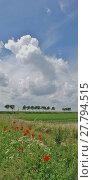 Купить «dikes and fields landscape in ouddorp,goeree-overflakkee,south netherlands», фото № 27794515, снято 20 февраля 2019 г. (c) PantherMedia / Фотобанк Лори