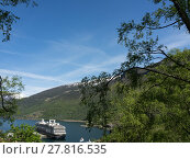 Купить «tree norway scandinavia fjord aurlandsfjörd», фото № 27816535, снято 20 сентября 2018 г. (c) PantherMedia / Фотобанк Лори