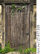 Купить «Old wooden door with brick wall texture background.», фото № 27817039, снято 27 июня 2019 г. (c) PantherMedia / Фотобанк Лори