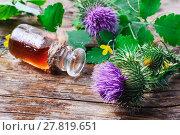 Купить «Flower and burdock extract», фото № 27819651, снято 22 марта 2019 г. (c) PantherMedia / Фотобанк Лори