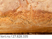 Купить « loaves of bread traditionally roasted.  Background. Close up. », фото № 27828335, снято 22 августа 2018 г. (c) PantherMedia / Фотобанк Лори