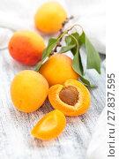 Купить «Fresh ripe apricots .», фото № 27837595, снято 20 июня 2018 г. (c) PantherMedia / Фотобанк Лори