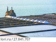 Купить «salinas de janubio in Lanzarote, Spain», фото № 27841707, снято 28 мая 2018 г. (c) PantherMedia / Фотобанк Лори