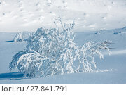 Winter mountain snowy landscape. Стоковое фото, фотограф Юрий Брыкайло / Фотобанк Лори