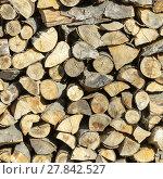Купить «dry firewood», фото № 27842527, снято 16 июня 2019 г. (c) PantherMedia / Фотобанк Лори