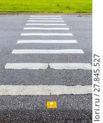 Купить «zebra way on the asphalt road surface», фото № 27845527, снято 19 ноября 2018 г. (c) PantherMedia / Фотобанк Лори