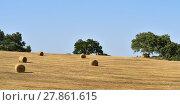 Купить «Rural lanscape, Alentejo, Portugal», фото № 27861615, снято 12 июня 2017 г. (c) Знаменский Олег / Фотобанк Лори