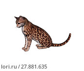 Купить «ocelot schleich cat isolated», фото № 27881635, снято 19 июля 2019 г. (c) PantherMedia / Фотобанк Лори