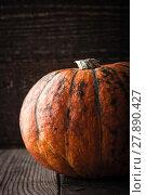 Купить «Orange pumpkin with green stripes on the wooden table vertical», фото № 27890427, снято 23 сентября 2019 г. (c) PantherMedia / Фотобанк Лори
