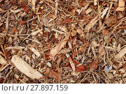 Купить «Coarse wood chippings background», фото № 27897159, снято 22 июля 2018 г. (c) PantherMedia / Фотобанк Лори