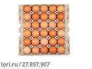 Купить «egg in paper panel», фото № 27897907, снято 16 июля 2019 г. (c) PantherMedia / Фотобанк Лори