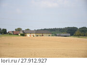 Купить «wheat,corn,maize,field,summer,straw,harvest time,harvest», фото № 27912927, снято 20 мая 2019 г. (c) PantherMedia / Фотобанк Лори