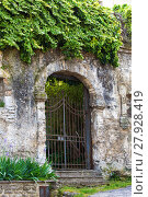 Купить «Gated arched entrance in a weathered wall covered with ivy», фото № 27928419, снято 21 марта 2019 г. (c) PantherMedia / Фотобанк Лори