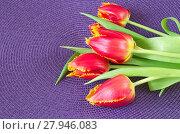 Купить «Красные тюльпаны», фото № 27946083, снято 9 марта 2017 г. (c) Елена Коромыслова / Фотобанк Лори