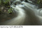 Купить «Waterfall on the forest stream», фото № 27953879, снято 15 ноября 2018 г. (c) PantherMedia / Фотобанк Лори