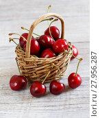 Купить «Red cherries in a basket», фото № 27956287, снято 19 ноября 2018 г. (c) PantherMedia / Фотобанк Лори