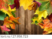 Купить «background wood backdrop autumn gorgeous», фото № 27958723, снято 22 октября 2018 г. (c) PantherMedia / Фотобанк Лори