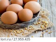 Купить «Chicken eggs», фото № 27959435, снято 19 декабря 2018 г. (c) PantherMedia / Фотобанк Лори