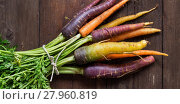 Купить «Fresh organic rainbow carrots with green», фото № 27960819, снято 18 мая 2019 г. (c) PantherMedia / Фотобанк Лори