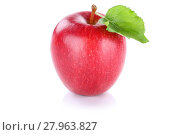 Купить «apple fruit fresh fruit red cut out isolated», фото № 27963827, снято 15 октября 2018 г. (c) PantherMedia / Фотобанк Лори