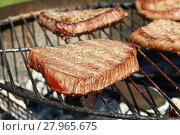 Купить «Grilled beef steaks cooking on barbecue grill», фото № 27965675, снято 16 июля 2019 г. (c) PantherMedia / Фотобанк Лори