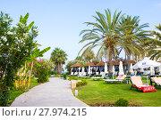 Купить «Paphos, Cyprus - July 20, 2017: Palm beach with empty sunbeds against Constantinou Bros Athena Beach Hotel. The hotel was fully refurbished in the winter of 10/11», фото № 27974215, снято 20 июля 2017 г. (c) Papoyan Irina / Фотобанк Лори