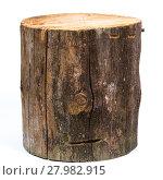 Купить «log isolated on a white background», фото № 27982915, снято 21 ноября 2019 г. (c) PantherMedia / Фотобанк Лори