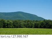 Купить «Overlook Mountain from Zena Cornfield», фото № 27990167, снято 20 октября 2018 г. (c) PantherMedia / Фотобанк Лори