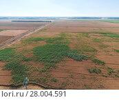 Купить «Wheat field and road among fields. Masts of electric fields», фото № 28004591, снято 22 января 2019 г. (c) PantherMedia / Фотобанк Лори