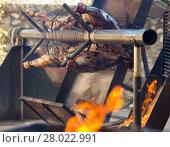 Купить «Whole bull carcass on spit», фото № 28022991, снято 24 марта 2019 г. (c) Яков Филимонов / Фотобанк Лори