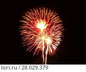 Купить «fireworks in the night sky», фото № 28029379, снято 5 июля 2020 г. (c) PantherMedia / Фотобанк Лори