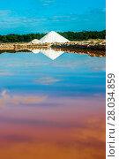 Купить «salt vaporescence saline evaporation extraction», фото № 28034859, снято 24 марта 2018 г. (c) PantherMedia / Фотобанк Лори