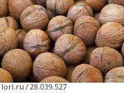 Купить «Whole walnuts in nutshells close up», фото № 28039527, снято 20 июля 2019 г. (c) PantherMedia / Фотобанк Лори